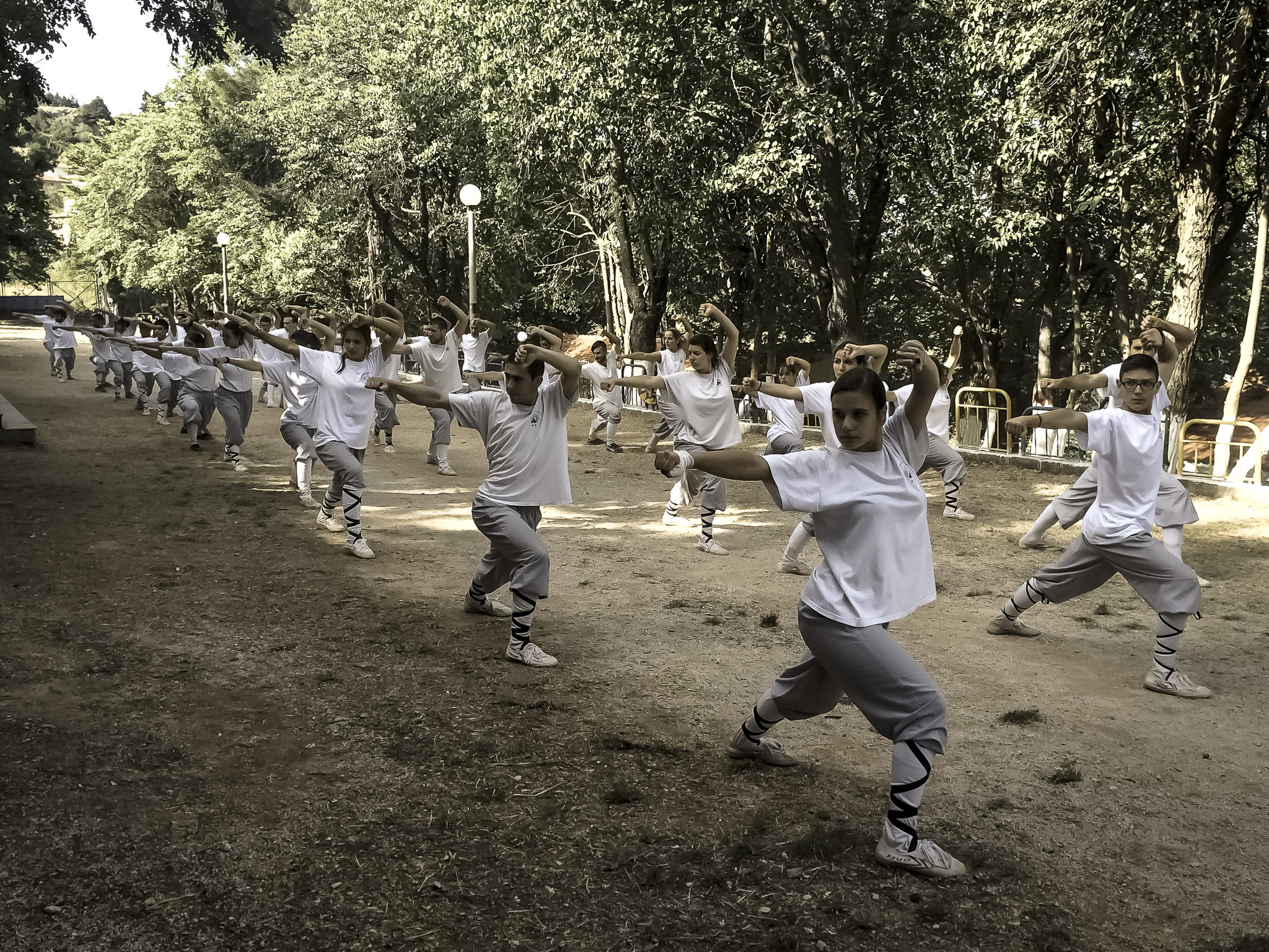 2d Traditional Shaolin Camp in Greece